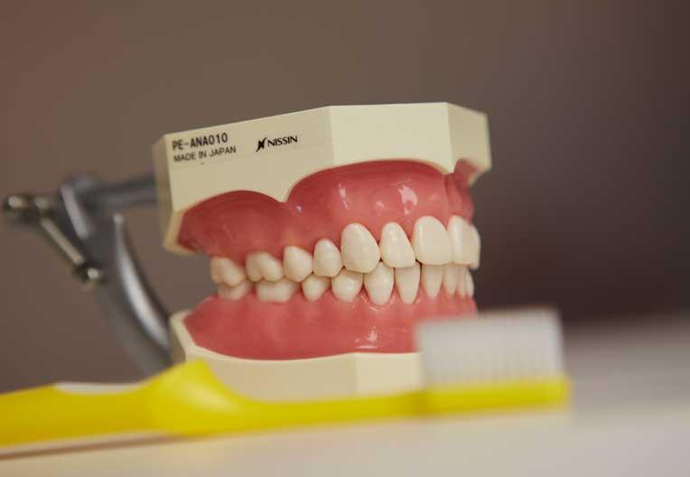 入れ歯 年齢 総